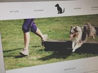 St Bavo Website
