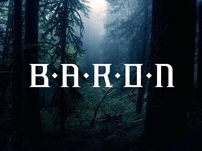 Baron typography letters typo baron typography
