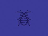 Inscect - bedbug