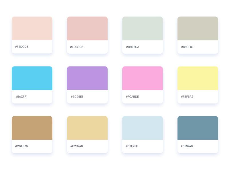 Dr Wang S Color Palettes By Jacob Voyles Dribbble Dribbble