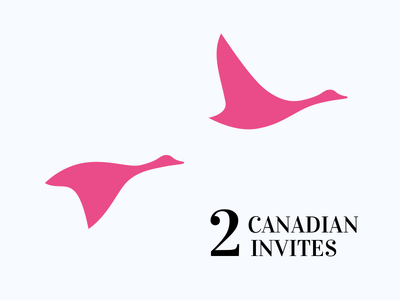 2 dribbble invites canadian goose goose geese canada invitation invite 2 invites dribbble invite