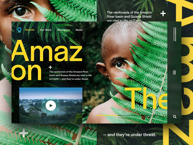 Conservation.org Experiment rainforest conservation amazon digital hero ui webdesign web design web