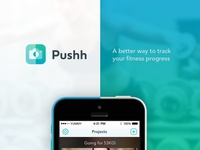Pushh Private Beta