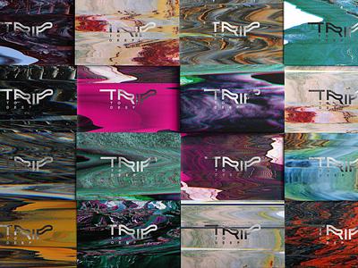 Trip To Deep | Brand Identity mockupcloud graphic design logo illustration design identity showcase brand psd branding template mockup