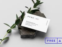 10 pure branding mockup vol1 free
