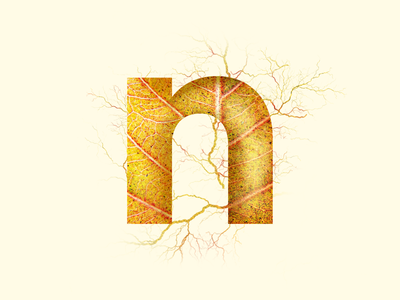 n - #36DaysOfType pattern abstract nature 36daysoftype