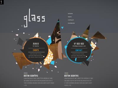 Glass website glass shards