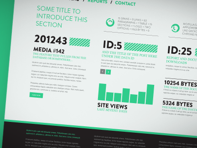 'BAP' website home page website infographics