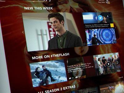 the Flash FanPage design web design design website