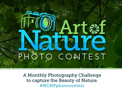Art of Nature Photo Contest - Logo Graphic