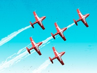 CF Snowbirds in Conception Bay South