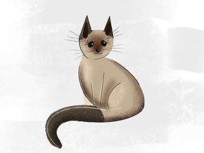Kitty ipad pro feline siamese kitty cat