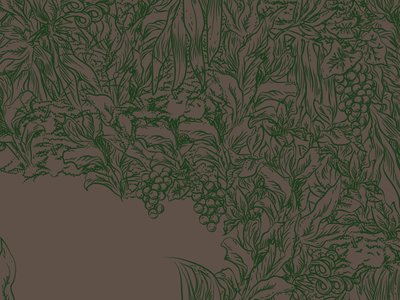Detail plant lineart drawing botany