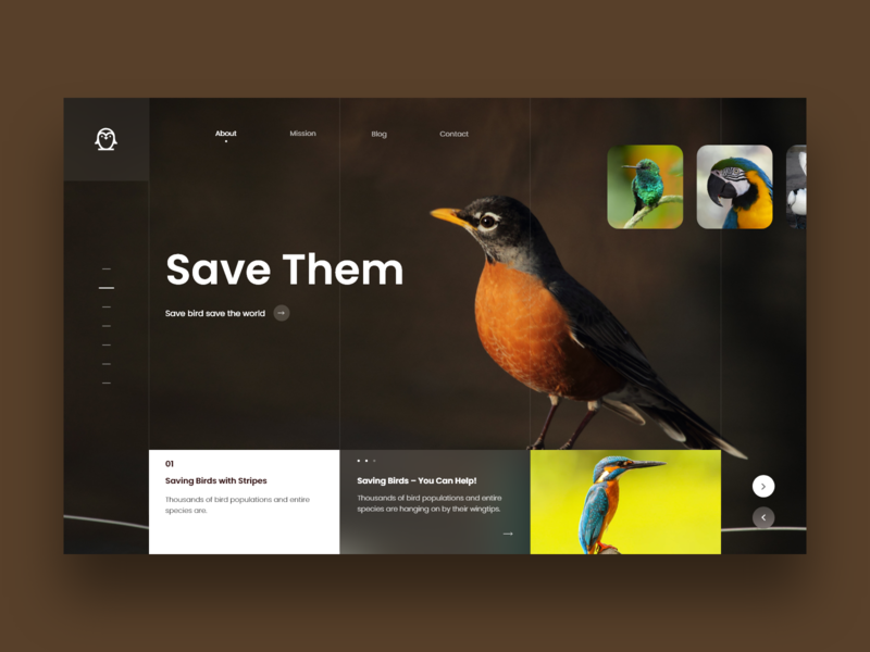 Save Bird landing page design inspiration design dribbble 2018 design art website web bird landing page concept landing page uidesign ux animation ux design