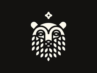 Bear Logo alaska star identity icon logo north bear
