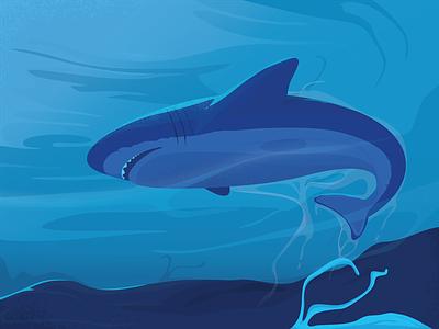 Shark! design art blue web fish sea deep shark vector illustration