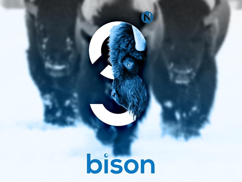 gN logo logo gn animal bison webdesign ui design simple photoshop adobe
