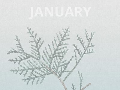 Wallpaper - January wallpaper desktop january monthly