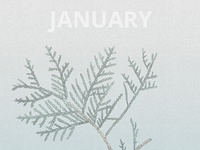Wallpaper - January