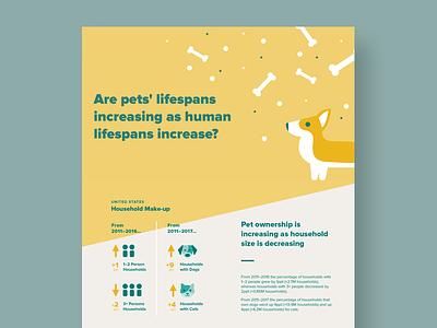 Pet vs Human Lifespans data corgi pet pets infographic information design