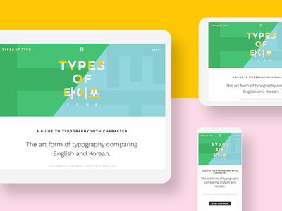 Types of Type #2 guide alphabet english hangul korean translation responsive website interactive typography types of type
