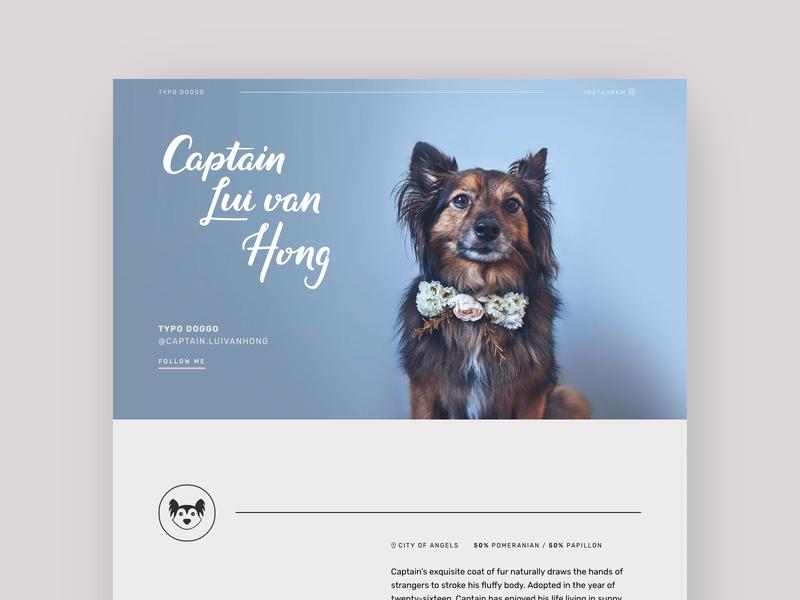 Captain Lui van Hong hand lettering lettering typography responsive pets dogs papillon pomeranian blue web design pet dog website