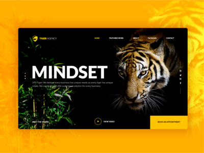 Tiger Agency Landing Page Concept