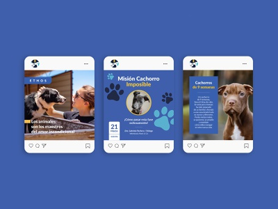 Social Media Ethos brand identity dogs cats animal behavior veterinary pets mark logo costa rica logotype identity branding
