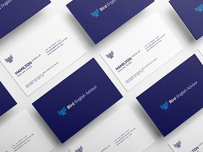Business Card - Bird English Advisor brand identity typography logo branding design