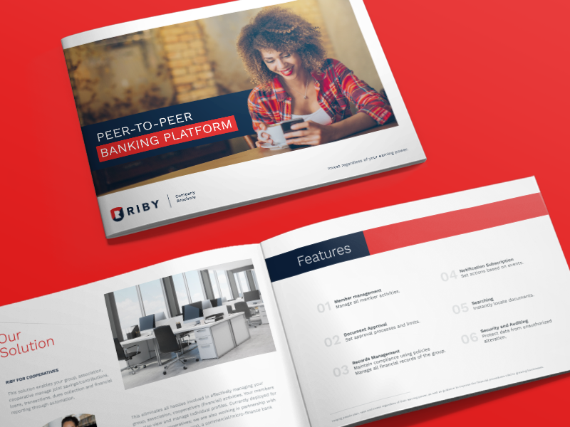 Riby Identity logo identity finance brochure stationaries branding