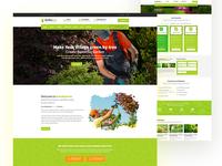 Gardening & Landscaping Web Concept
