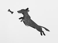 Weiner Dog (Printed)!