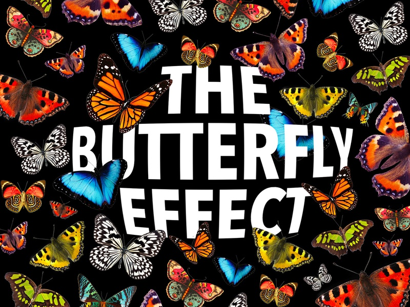 The Butterfly Effect clean creative inspiration artist art collage poster designer graphicdesign abstract colorful typography art branding design daily art typography butterfly