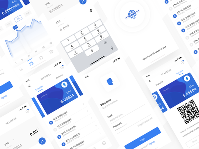 Application of accounting for funds on crypto wallets bank bitcoin transfer money dashboard design flat illustration app ux ui