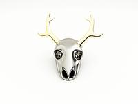 Skull of deer 🦌