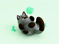 Kitten playing 🎾