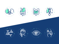 Hospital Website Icons