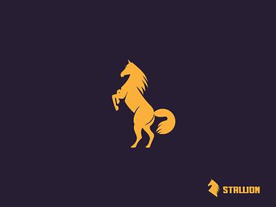 Stallion Horse illustration horse symbol logo geometric stallion stallion horse logo illustration logo design