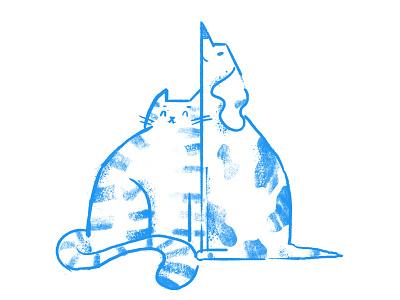 Karma Wraca wrocław charity help dog cat tooploox