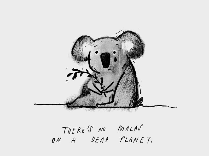 Koalas extinction climate change xr fires illustration koala koalas australia