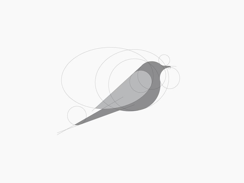 Process bird bird logo bird branding golden ratio vector illustration logo illustrator