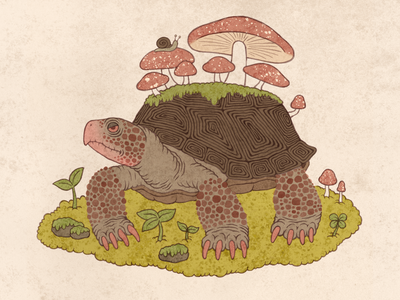 Forest Creature 03 childrensbookillustration mushroom turtle illustration forest fantasy