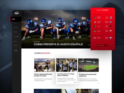 FEFA - Home page