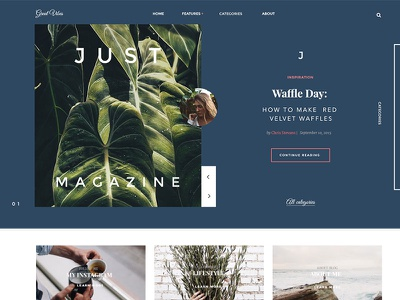 Great Vibes  uikit kit simple ux ui magazine blog webdesign web