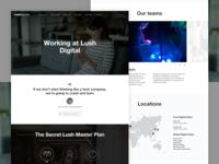 Lush | Digital Careers Hub