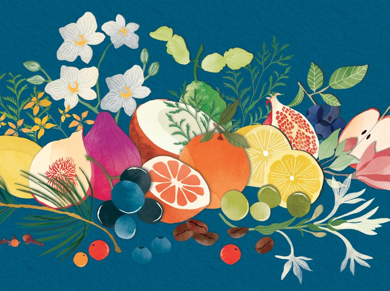 | Colourful and energetic composition | editorial drawing food watercolour illustration