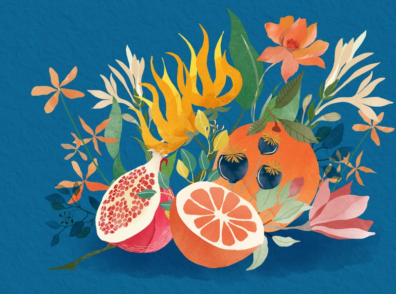 | Fruits, flowers and colours | editorial drawing watercolour illustration