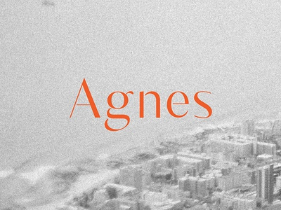 Agnes Typeface design typo agnes typeface font typography