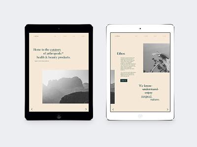 ento - digital platforms artdirection web webdesign digital branding typography illustration design graphicdesign