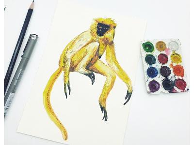 The Golden Langur tutorial watercolor monkey